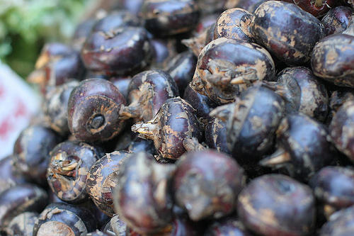 Image Result For Water Chestnuts Nut Allergy